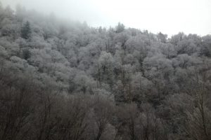 Snowy+peaks-min