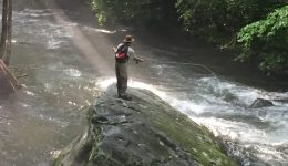 smokymountainguides.com-fishing_tour_03-50